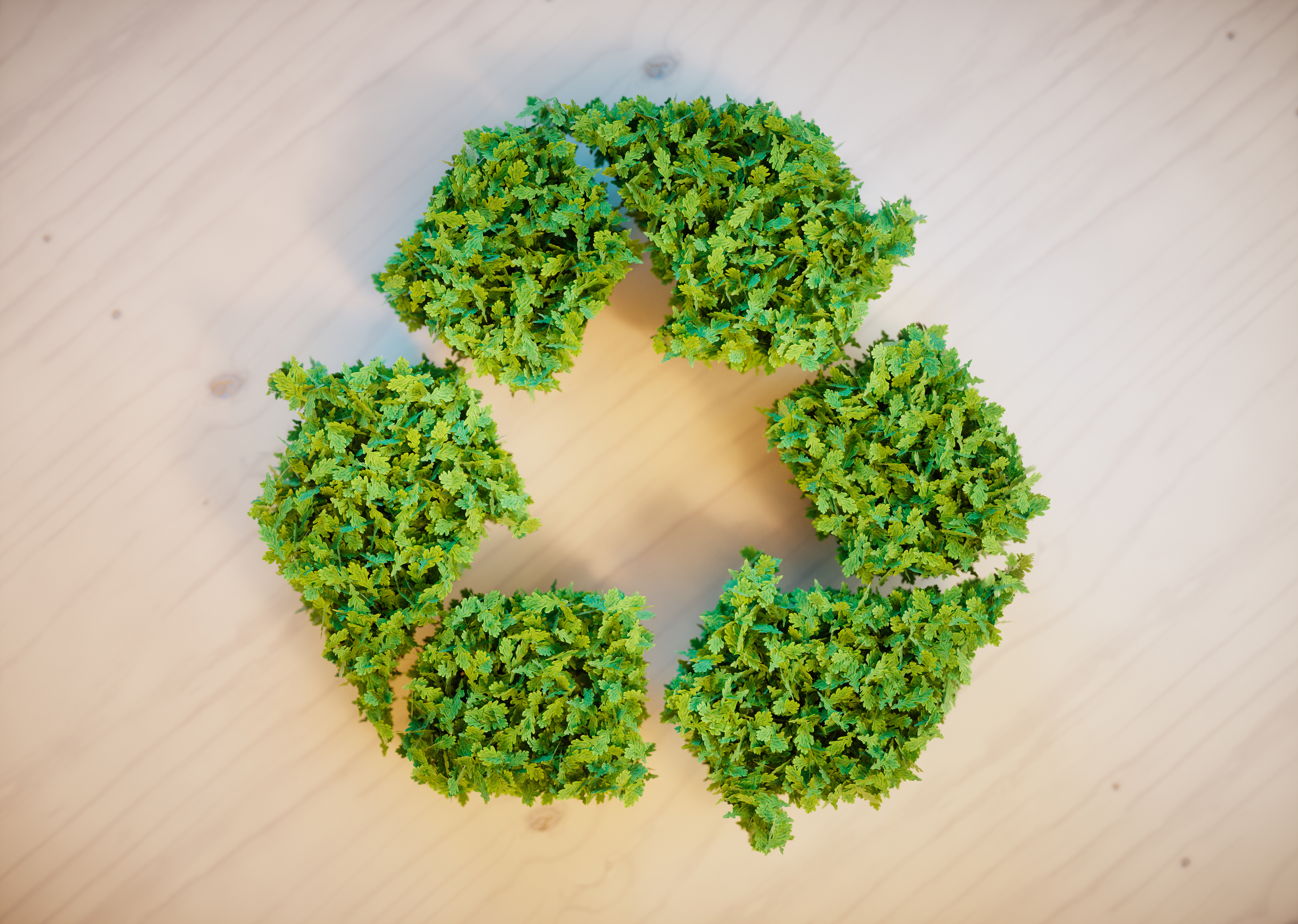 Image: Sustainable Design and Environmental Contributions